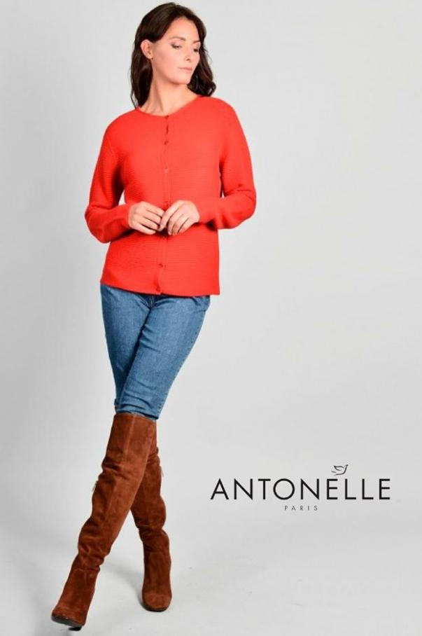 Collection Pulls & Gilets . Antonelle (2020-02-26-2020-02-26)