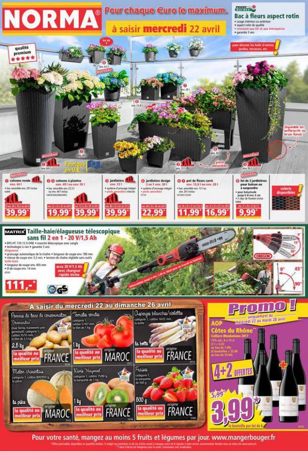 Catalogue Norma . Norma (2020-04-26-2020-04-26)