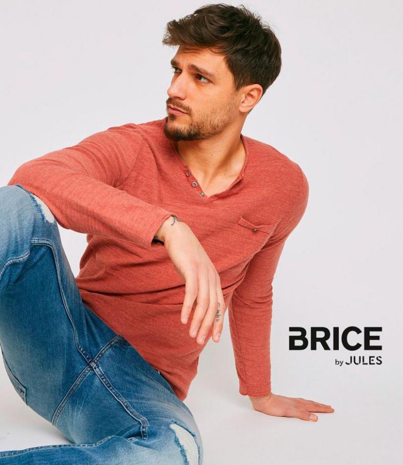 Nouveautés . Brice (2020-07-25-2020-07-25)