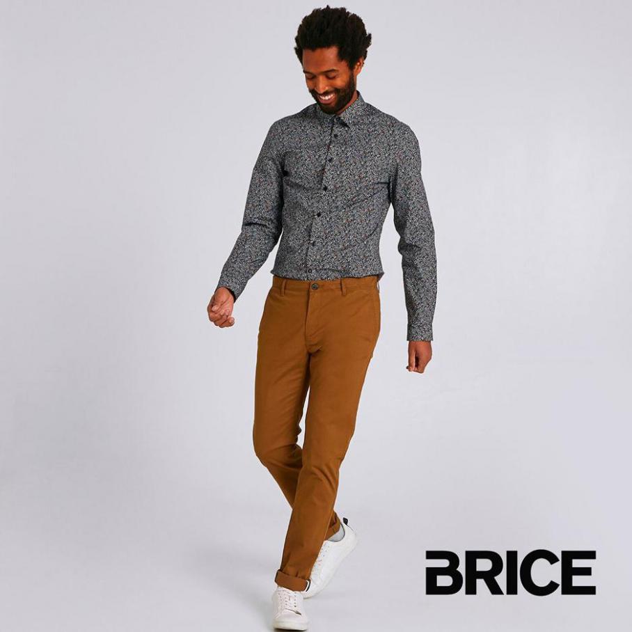 Nouveautés . Brice (2021-03-22-2021-03-22)