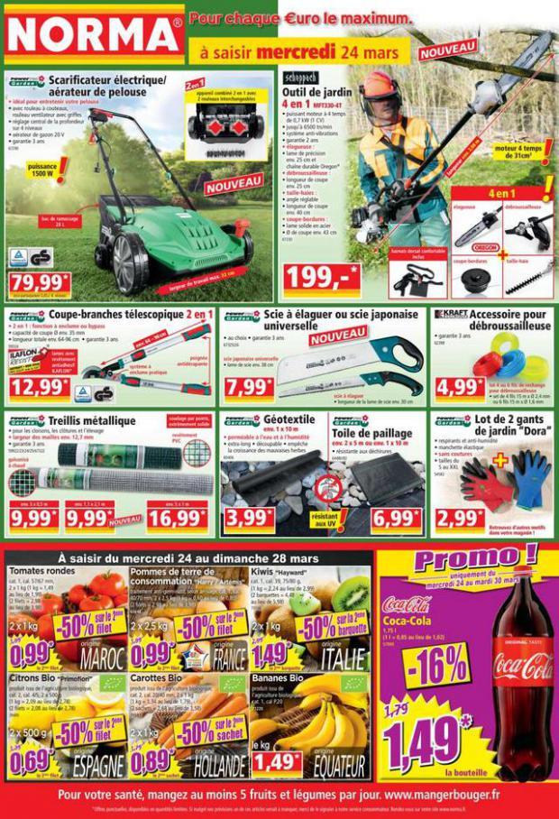 Catalogue Norma . Norma (2021-03-19-2021-03-19)