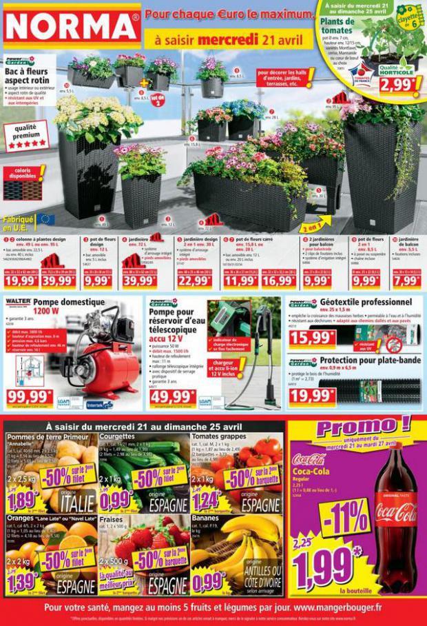 Catalogue Norma . Norma (2021-04-21-2021-04-21)