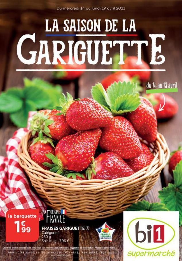 Catalogue Bi1 . Bi1 (2021-04-19-2021-04-19)