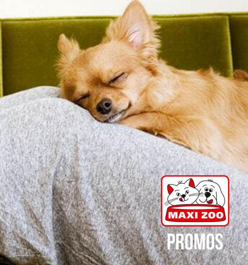 Promos . Maxi Zoo (2021-05-12-2021-05-12)