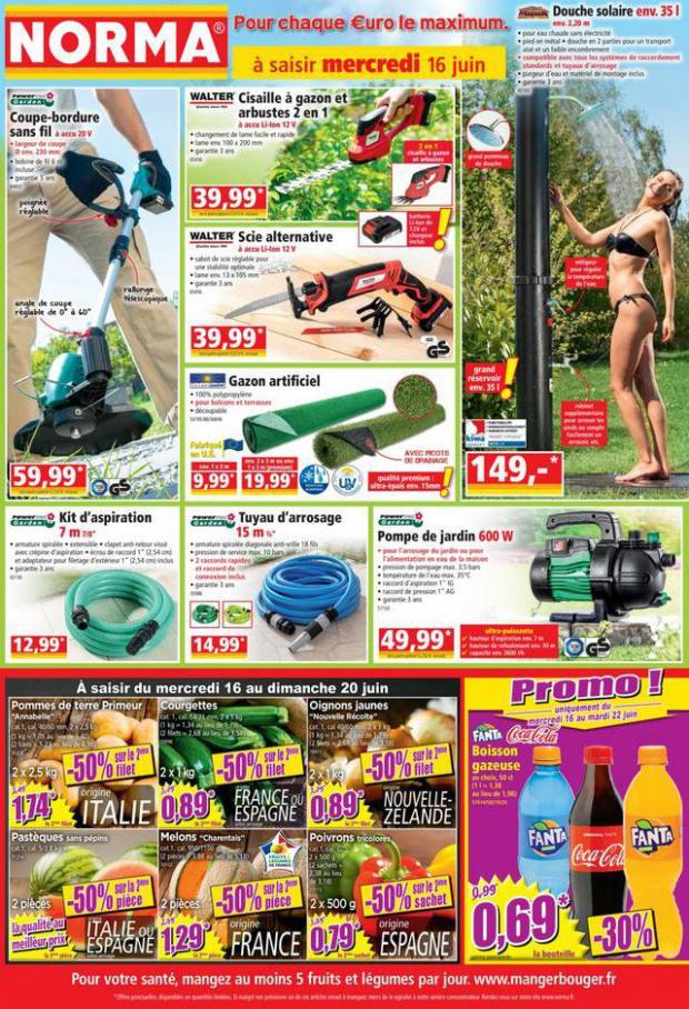 Catalogue Norma. Norma (2021-06-11-2021-06-11)