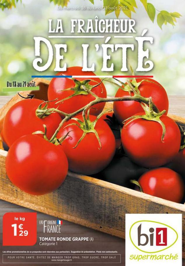 Catalogue Bi1. Bi1 (2021-08-22-2021-08-22)